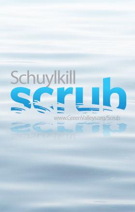Schuylkill Scrub