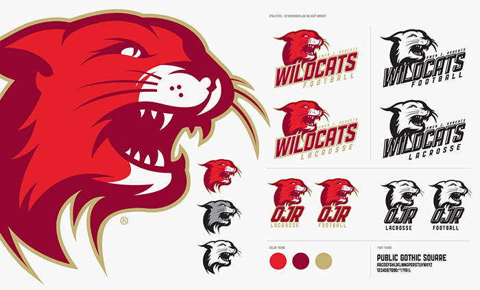 School Athletic Team Brand and Logo Standards